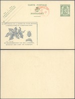 EP Au Type 35ctm Vert Petit Sceau De L'état + PUB Doryphore (Insecte) Et Surcharge Mécanique 5C (P.010) / Neuf - Enteros Postales