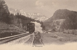 SUISSE - 2 CPA : Brünigbahn - Passau - Suisse