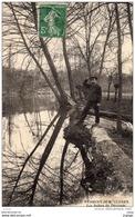 PERIGNY-sur-YERRES  Les Aulnes Du Déversoir   Carte écrite En 1908    2 Scans  TBE - Perigny