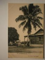 Afrique (Madagascar ?) Agence Des Colonies. La Récolte Des Cocos (9111) - Madagaskar