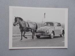 PHOTO  FRANCIS STOPPELMAN LA VOITURE A UN CHEVAL  COCCINELLE - Photographs