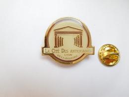 Beau Pin's , La Cité Des Antiquaires , Lyon Villeurbanne , Rhône - Villes