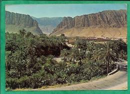 Les Gorges D'El Kantara 2scans 04-08-1972 - Algérie