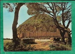 Sidi Rached (Tipaza) Le Tombeau De La Chrétienne 2scans Mausolée Royal De Maurétanie - Algérie