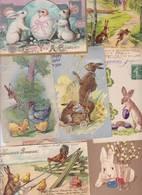 Lot 2403 De 10 CPA Lapin Bunny Déstockage Pour Revendeurs Ou Collectionneurs - Postales