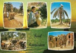 Tu - Souvenir Du Sud Tunisien - Multivues (6) - éd. Edichem - H. Ismail N° 62 (circ. 1977) - Tunisie