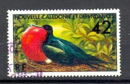 Timbre Oblité - NOUVELLE CALEDONIE - Oiseau De Mer Fregata Minor Male - Y&T 178 - (1) - Neukaledonien