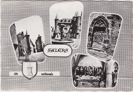 SALERS Carte Multivues Blason De L' Artiste Heraldique Robert Louis - Autres Communes