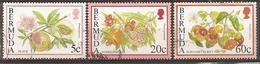 Bermudes Bermuda 1994 Fleurs Fruits Flowers Obl - Bermuda