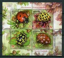 Belarus 2015 Insects. Ladybirds Fauna Mi Bl 125 MNH** - Belarus