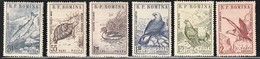1960 Romania Wildlife: Birds, Danube Salmon, Tortoise Set (** / MNH / UMM) - Other