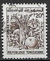 TUNISIE   -   TAXE  -   1960  .  Y&T N° 80 Oblitéré.  Fruits - Tunisia