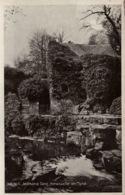 Old Mill Jesmond Dene, Newcastle On Tyne (Vieux Moulin) Carte Non Circulée - Newcastle-upon-Tyne