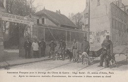 CARTE POSTALE  Après Les Manoeuvres Des Voiturettes à Chiens Rentrent Au Chenil - Guerre 1914-18