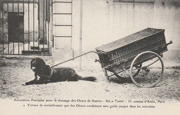 CARTE POSTALE  Voiture De Ravitaillement Pour Les Tranchées - Guerre 1914-18