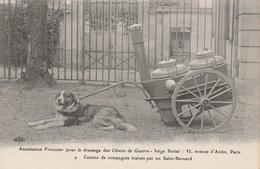 CARTE POSTALE  Cuisine De Compagnie Traînée Par Un Saint Bernard - Guerre 1914-18