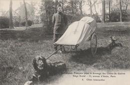 CARTE POSTALE   Chien Brancardier - Guerre 1914-18