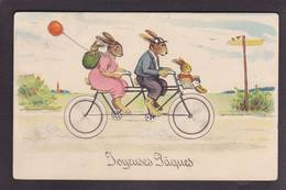 CPA Lapin Position Humaine Vélo Cycle Tandem Circulé - Animales