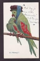 CPA Perroquet Oiseau épingle à Chapeau Position Humaine Circulé - Pájaros