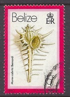 Belize - 1980 Marine Life, Shells, Murex Cabritii Bernardi - Used - Belize (1973-...)