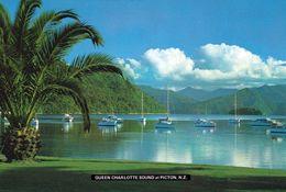 1 AK Neuseeland * Queen Charlotte Sound - Ein Meeresarm Im Norden Der Südinsel Von Neuseeland * - Nueva Zelanda