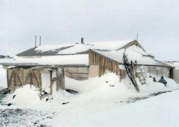 1 AK Antarctica Antarktis * Hütte Von Robert Falcon Scott Am Cape Evans Auf D. Insel Ross, Diese Hütte Wurde 1911 Erbaut - Postkaarten