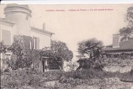 CAPIAN  : (33) Château Du Peyrat. Un Joli Massif De Fleurs - Altri Comuni
