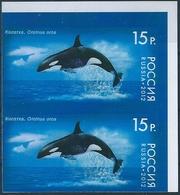 B7489 Russia Rossija Fauna Marine Life Whale Pair Colour Proof - Balene