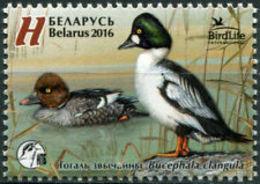 Belarus 2016 Bird Of The Year. Common Goldeneye Fauna Ducks Mi 1108 MNH* - Belarus