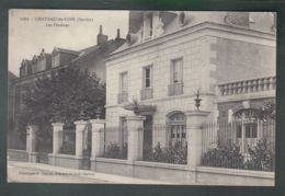 CPA (72) Château-du-Loir  -  Les Pivoines - Chateau Du Loir