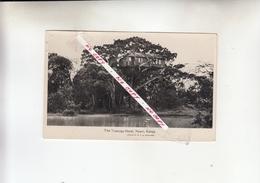 KENYA   1900 - Kenia