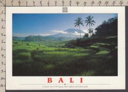 115538GF/ BALI, The Mount Agung - Indonésie