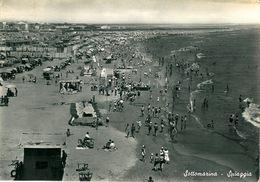 SOTTOMARINA (VE) - Spiaggia - F/G - V - Animata - Italia
