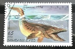 142. SAHARA O.C.C. 1994 USED STAMP PRE HISTORIC MARINE ANIMALS - Sonstige - Afrika