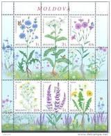2016. Moldova, Flora Of Moldova, Wild Flowers,  S/s, Mint/** - Moldova