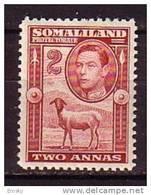 PGL - BRITISH COLONIES SOMALILAND Yv N°78 ** - Somaliland (Protectorate ...-1959)