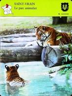 SAINT VRAIN (Essonne) - Parc Animalier - Photo Des Tigres  - FICHE GEOGRAPHIQUE - Ed. Larousse-Laffont - Géographie