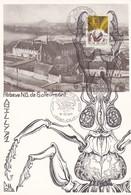 Feuillet 1610 Insecte Papillon De Lune Abbaye ND De Soleilmont Gilly - Panes