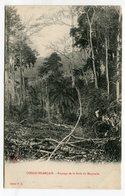 Congo Francais , Paysage De La Foret Du Mayombe - Congo Français - Autres