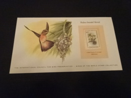 EP57 - Birds Of The World Stamp Collection -  Grenada 1980 - Rufous-breasted Hermit - Colibris