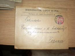 Judaica Bienenstok Lipot Es Fia  Ruggyantabelyegzo Gyae Es Veso Intezete Budapest 1911 - Hongrie