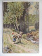 Grimm  Rotkäppchen / Red Riding Hood / Contes De Fées / Fairy Tales  Serie: Deutsche Märschen 2 Scan - Collections