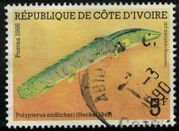 Côte D'Ivoire 1986 Oblitéré Used Fish Poisson Polypterus Endlicheri Endlicheri Bichir Sellé SU - Ivory Coast (1960-...)
