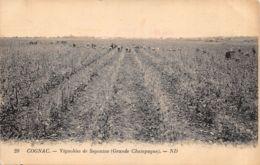 16-COGNAC-VIGNOBLES DE SEGONZAC-N°2151-H/0001 - Autres Communes