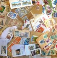 MONDE ENTIER - 340 Gr. Timbres Oblitérés à Décoller - Toutes époques, Nombreux Pays - Bon état - Stamps