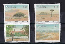 Namibia - Paintings JJ Van Elinchuizen 1993 UMM - Namibia (1990- ...)