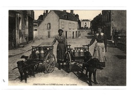 Loiret Chatillon Sur Loire Les Laitieres Attelage Voiture à Chiens Belle Animation - Chatillon Sur Loire