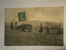 Le Cantal Pittoresque Récolte Des Pommes De Terre,Cantal 15,voyagée 1913,bel état Mais Un Nettoyage S'impose - Altri Comuni