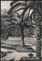 GIARRE (CATANIA) - FIORI, PALME E L'ETNA 1956 - Catania