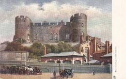 """""""Shrewsbury. The Castle"""" Tuck Oilette Postcard # 1441 - Tuck, Raphael"""